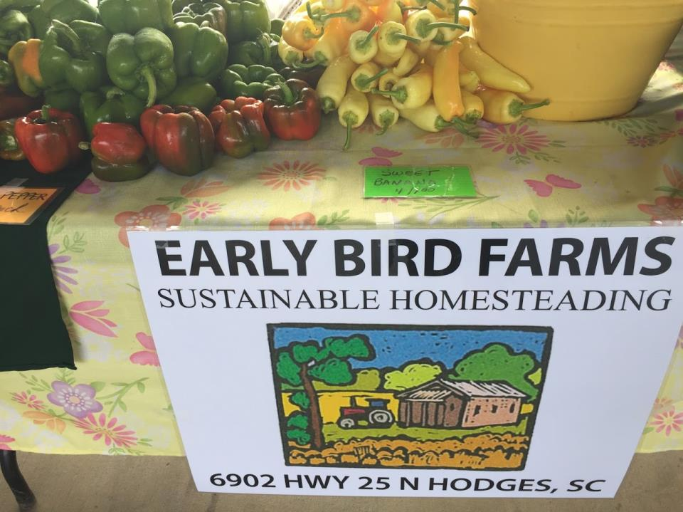 Earlybird sign