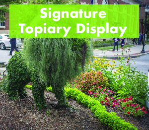 topiary display-01